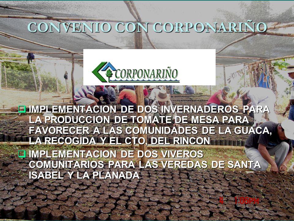 CONVENIO CON CORPONARIÑO IMPLEMENTACION DE DOS INVERNADEROS PARA LA PRODUCCION DE TOMATE DE MESA PARA FAVORECER A LAS COMUNIDADES DE LA GUACA, LA RECOGIDA Y EL CTO, DEL RINCON IMPLEMENTACION DE DOS INVERNADEROS PARA LA PRODUCCION DE TOMATE DE MESA PARA FAVORECER A LAS COMUNIDADES DE LA GUACA, LA RECOGIDA Y EL CTO, DEL RINCON IMPLEMENTACION DE DOS VIVEROS COMUNITARIOS PARA LAS VEREDAS DE SANTA ISABEL Y LA PLANADA IMPLEMENTACION DE DOS VIVEROS COMUNITARIOS PARA LAS VEREDAS DE SANTA ISABEL Y LA PLANADA