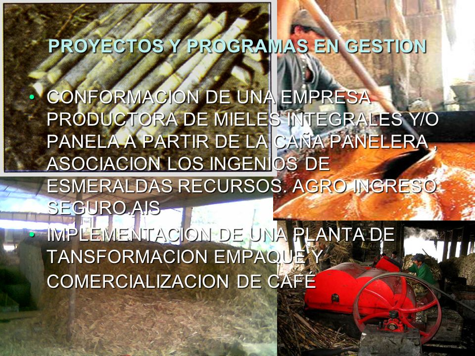 PROYECTOS Y PROGRAMAS EN GESTION CONFORMACION DE UNA EMPRESA PRODUCTORA DE MIELES INTEGRALES Y/O PANELA A PARTIR DE LA CAÑA PANELERA, ASOCIACION LOS INGENIOS DE ESMERALDAS RECURSOS.