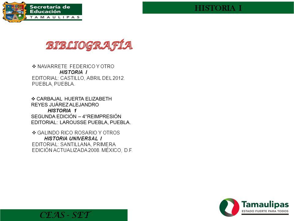CEAS - SET HISTORIA I NAVARRETE FEDERICO Y OTRO HISTORIA I EDITORIAL: CASTILLO, ABRIL DEL 2012. PUEBLA, PUEBLA. GALINDO RICO ROSARIO Y OTROS HISTORIA