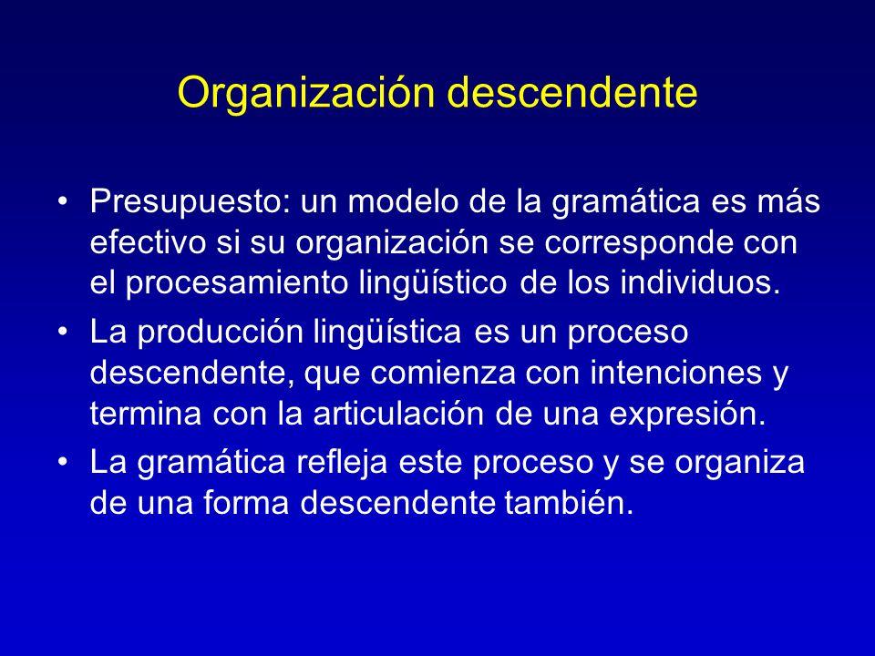 Organización descendente Presupuesto: un modelo de la gramática es más efectivo si su organización se corresponde con el procesamiento lingüístico de