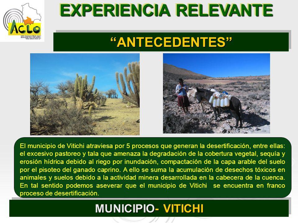 EXPERIENCIA RELEVANTE MUNICIPIO- VITICHI ANTECEDENTESANTECEDENTES El municipio de Vitichi atraviesa por 5 procesos que generan la desertificación, ent