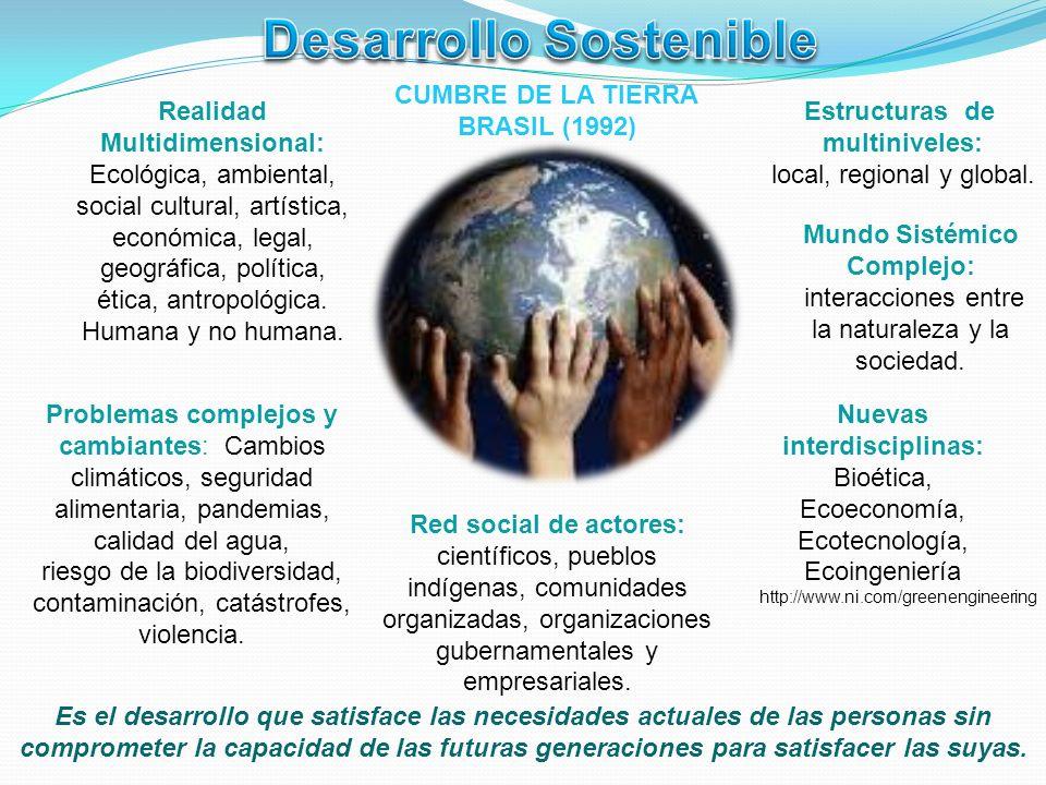 Estructuras de multiniveles: local, regional y global. Realidad Multidimensional: Ecológica, ambiental, social cultural, artística, económica, legal,