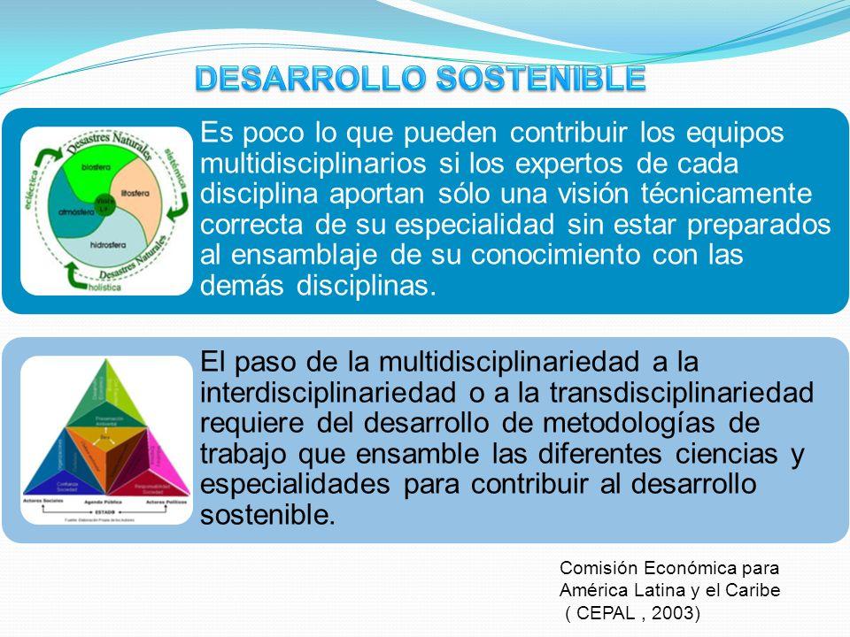 Comisión Económica para América Latina y el Caribe ( CEPAL, 2003) Es poco lo que pueden contribuir los equipos multidisciplinarios si los expertos de