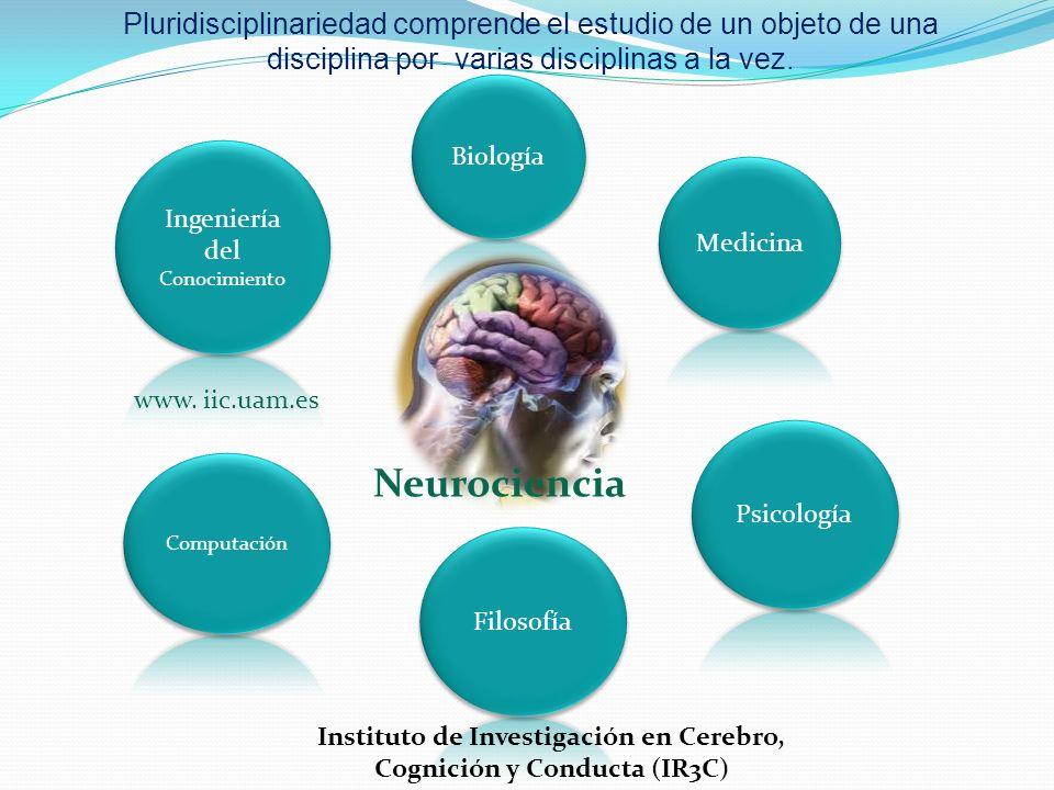 Pluridisciplinariedad comprende el estudio de un objeto de una disciplina por varias disciplinas a la vez. Neurociencia www. iic.uam.es Instituto de I
