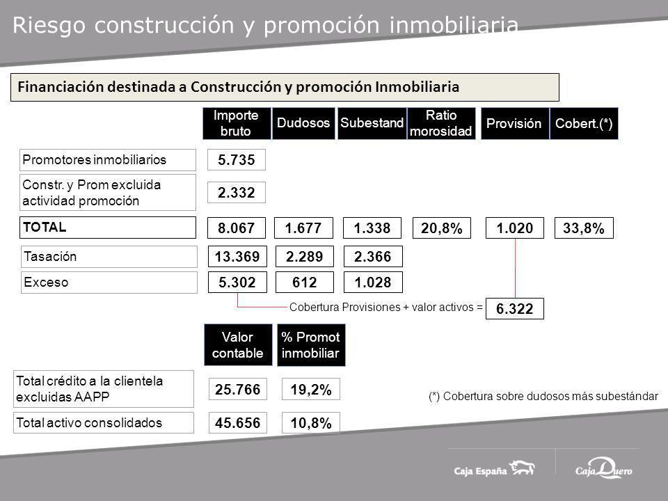 Riesgo construcción y promoción inmobiliaria Importe bruto Dudosos Promotores inmobiliarios Constr.