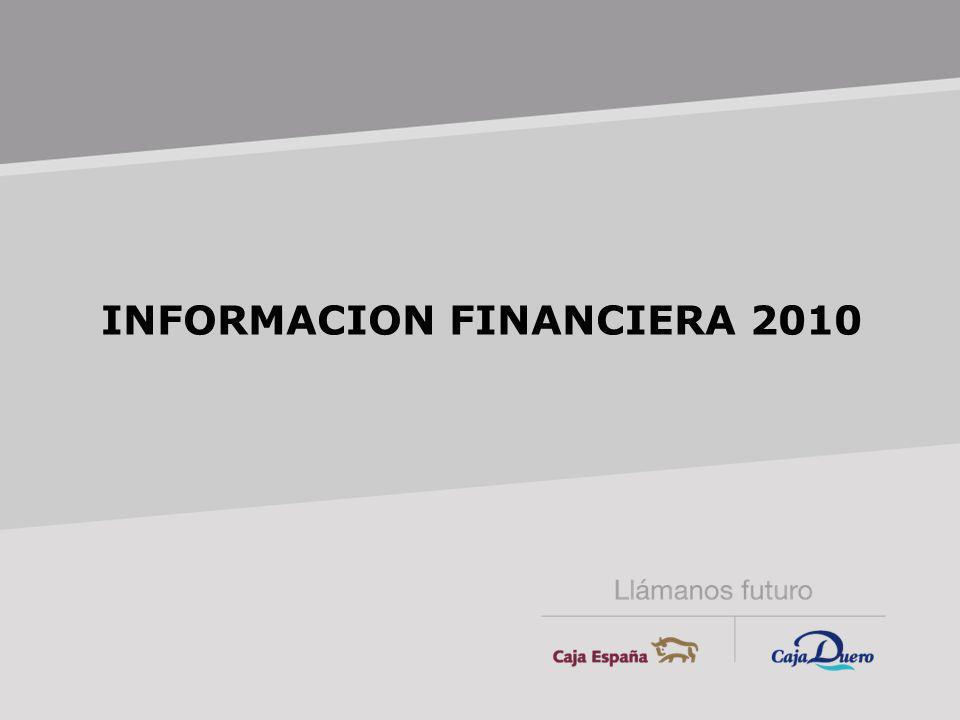 INFORMACION FINANCIERA 2010