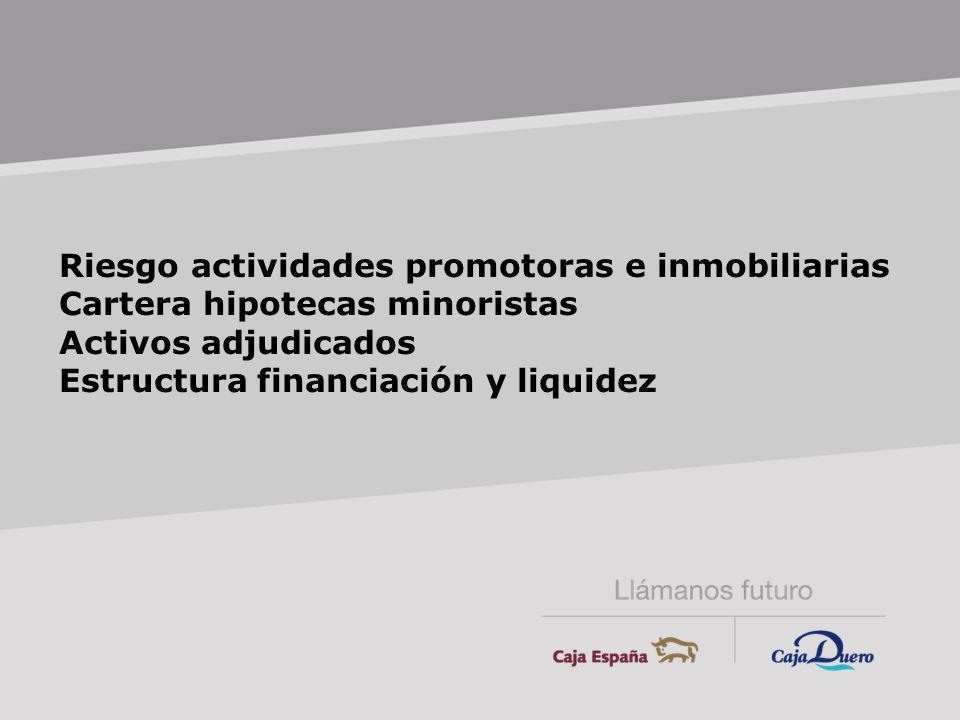 Riesgo actividades promotoras e inmobiliarias Cartera hipotecas minoristas Activos adjudicados Estructura financiación y liquidez