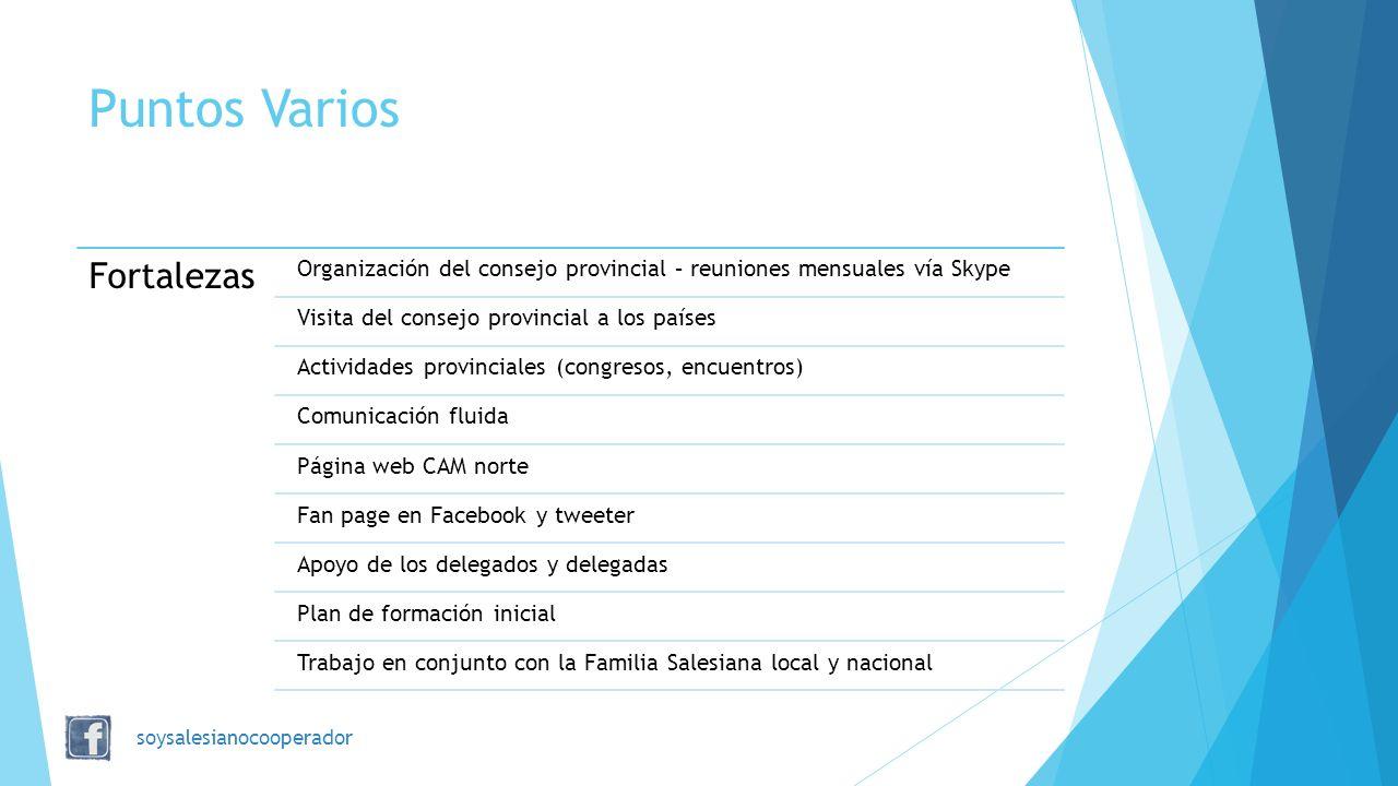 Puntos Varios Fortalezas Organización del consejo provincial – reuniones mensuales vía Skype Visita del consejo provincial a los países Actividades pr