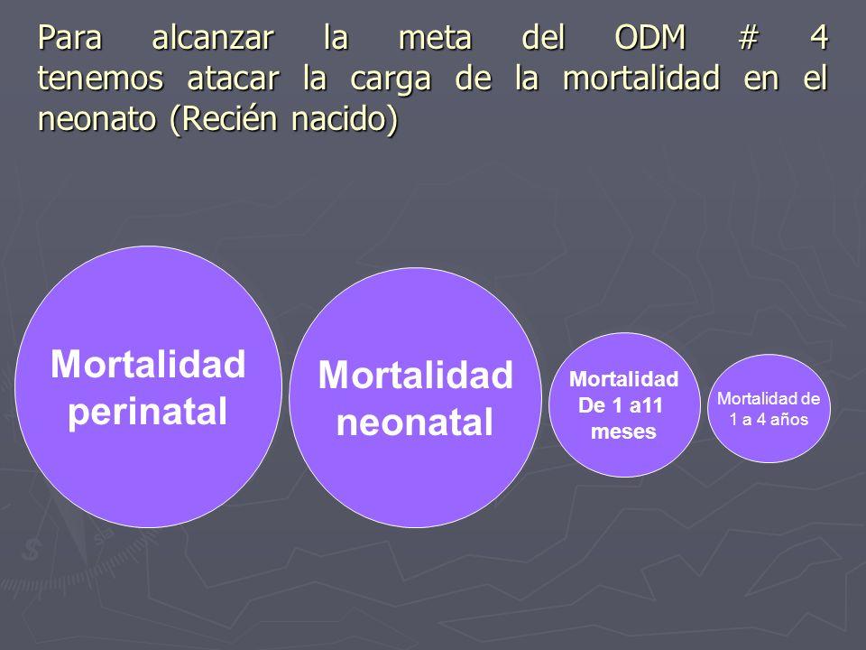 Para alcanzar la meta del ODM # 4 tenemos atacar la carga de la mortalidad en el neonato (Recién nacido) Mortalidad neonatal Mortalidad neonatal Morta