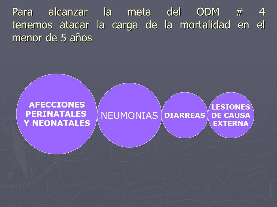 AFECCIONES PERINATALES Y NEONATALES NEUMONIAS DIARREAS LESIONES DE CAUSA EXTERNA Para alcanzar la meta del ODM # 4 tenemos atacar la carga de la morta