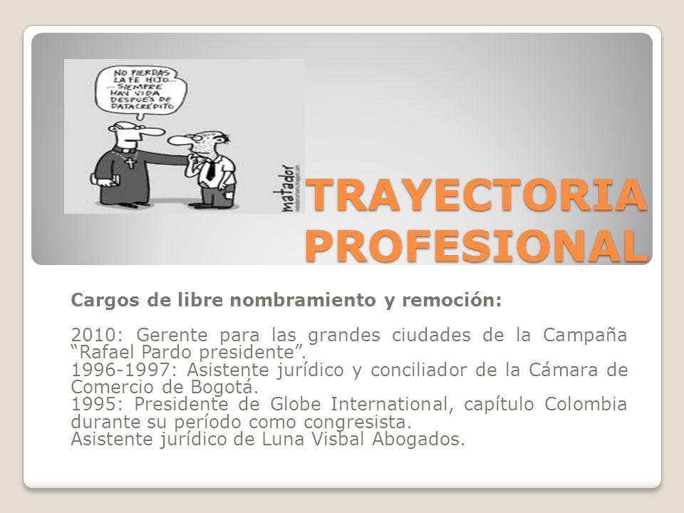 Cargos de libre nombramiento y remoción: 2010: Gerente para las grandes ciudades de la Campaña Rafael Pardo presidente. 1996-1997: Asistente jurídico