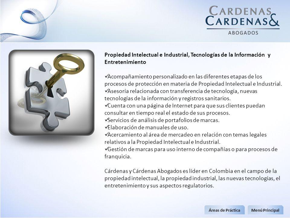 Propiedad Intelectual e Industrial, Tecnologías de la Información y Entretenimiento Acompañamiento personalizado en las diferentes etapas de los proce