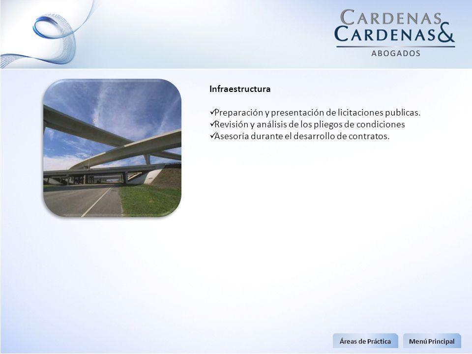 Infraestructura Preparación y presentación de licitaciones publicas. Revisión y análisis de los pliegos de condiciones Asesoría durante el desarrollo