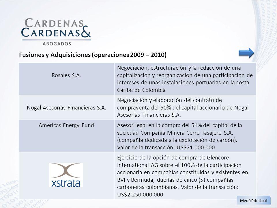 Rosales S.A. Negociación, estructuración y la redacción de una capitalización y reorganización de una participación de intereses de unas instalaciones