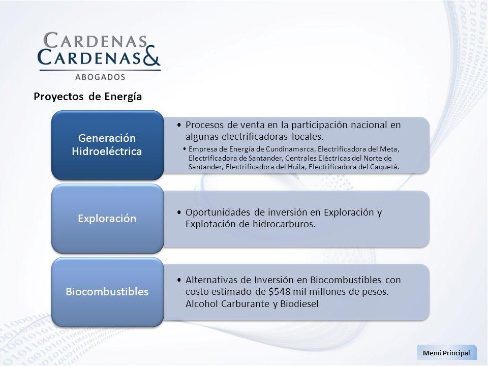 Proyectos de Energía Menú Principal Procesos de venta en la participación nacional en algunas electrificadoras locales. Empresa de Energía de Cundinam