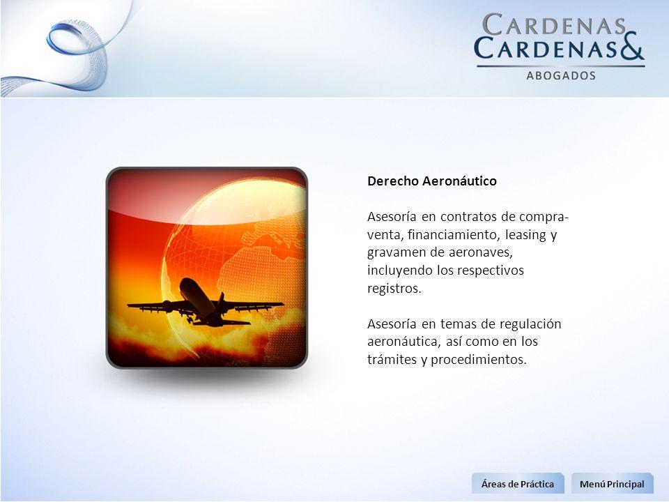 Derecho Aeronáutico Asesoría en contratos de compra- venta, financiamiento, leasing y gravamen de aeronaves, incluyendo los respectivos registros. Ase