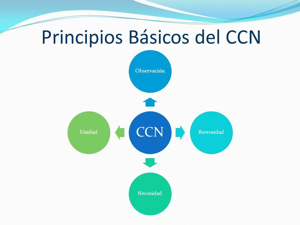 Principios Básicos del CCN CCN ObservaciónBorrosidadNecesidadUnidad