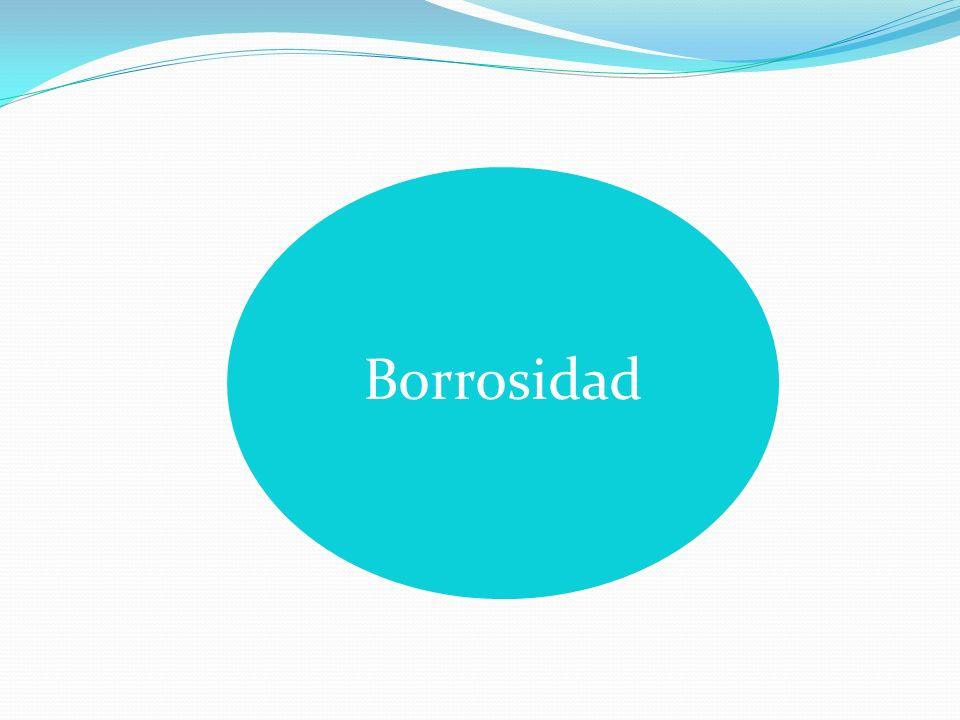 Borrosidad
