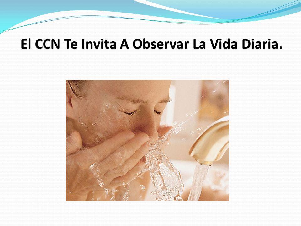 El CCN Te Invita A Observar La Vida Diaria.