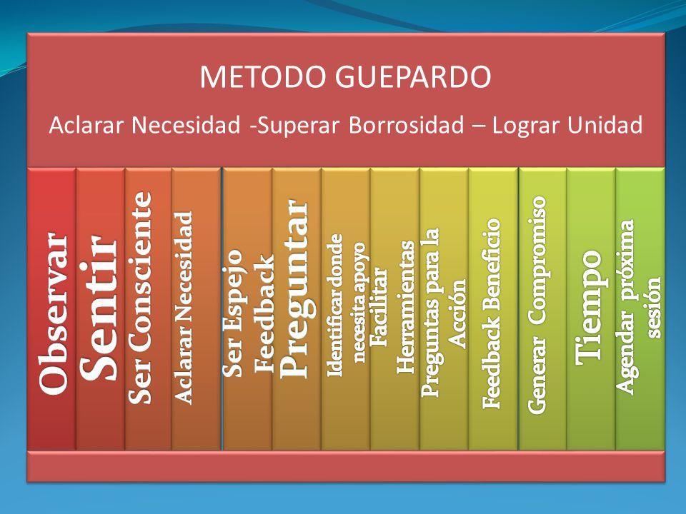 METODO GUEPARDO Aclarar Necesidad -Superar Borrosidad – Lograr Unidad