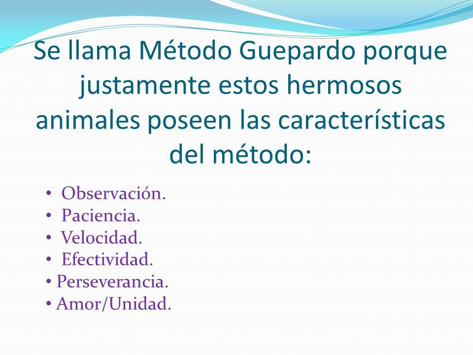 Se llama Método Guepardo porque justamente estos hermosos animales poseen las características del método: Observación.