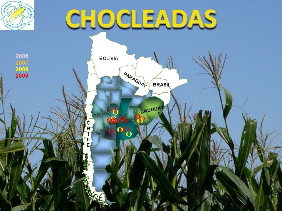 CHOCLEADASCHOCLEADAS 2006 2007 2008 2009 CHILECHILE BOLIVIA PARAGUAY URUGUAY BRASIL OO O OOO O O O O O O O OO O O O O O O