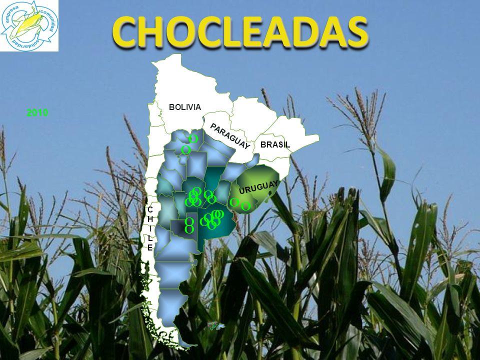 CHOCLEADASCHOCLEADAS 2010 CHILECHILE BOLIVIA PARAGUAY URUGUAY BRASIL O O O O O O O O O O O O O O O O O O O