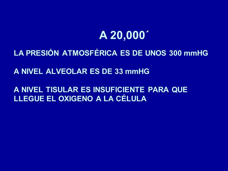 LOS SINTOMAS DE LA HIPOXIA APARECEN A PARTIR DE LOS 10.000 FT LAS AERONAVES COMERCIALES PRESURIZADAS MANTIENEN LA PRESION DE CABINA NO MAS ALTA DE LOS 6000 FT EN AERONAVES NO PRESURIZADAS NO ESTA PERMITIDO EL VUELO COMERCIAL CON PASAJEROS A MAS DE 10.000 FT