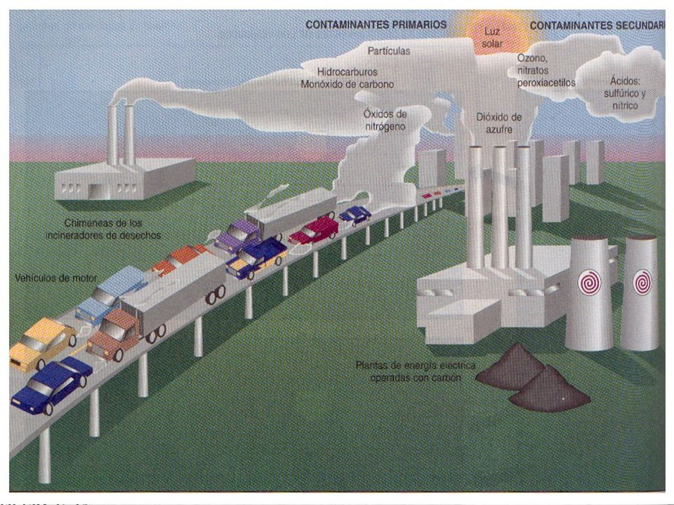 Gases Invernadero GASFUENTE EMISORATIEMPO DE VIDA CONTRIBUCION AL CALENTAMIENTO (%) Dióxido de carbono (CO2) Combustibles fósiles, deforestación, destrucción de suelos500 años54 Metano (CH4) Ganado, biomasa, arrozales, escapes de gasolina, minería7 - 10 años12 Oxido Nitroso (N2O) Combustibles fósiles, cultivos, deforestación140 - 190 años6 Clorofluorocarbonos (CFC 11,12) Refrigeración, aire acondicionado, aerosoles, espumas plásticas65 - 110 años21 Ozono (O3) y otros Fotoquímicos, automóviles, etc.horas - días8