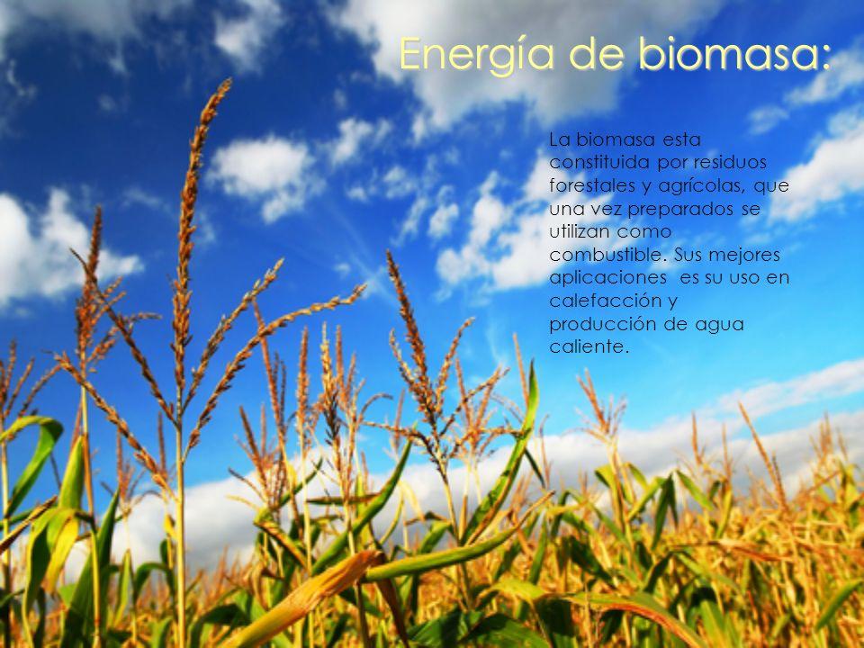 Energía de biomasa: La biomasa esta constituida por residuos forestales y agrícolas, que una vez preparados se utilizan como combustible. Sus mejores