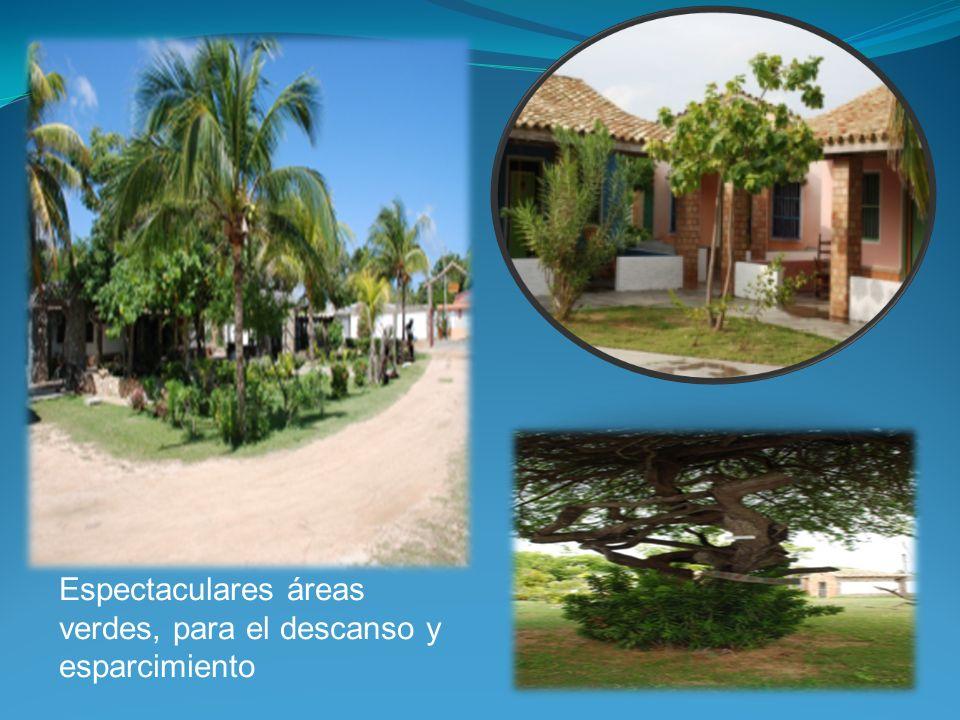 Áreas de recreación Internas: Dentro de las instalaciones del resort hay áreas de recreación y entretenimiento, como: salas de juegos, piscina deportiva, piscina de actividades y discoteca.
