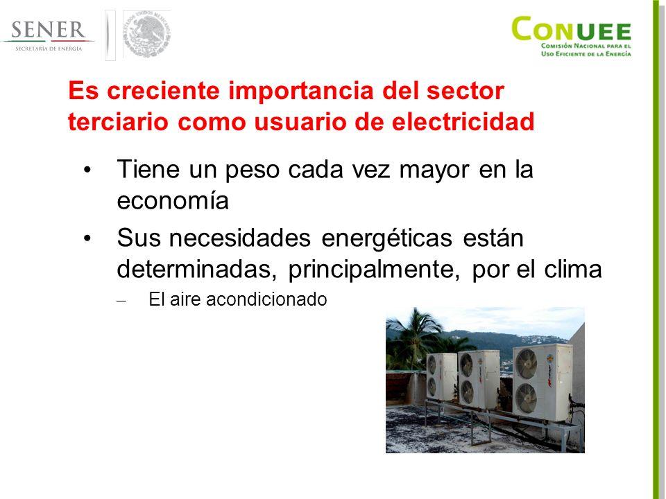 Es creciente importancia del sector terciario como usuario de electricidad Tiene un peso cada vez mayor en la economía Sus necesidades energéticas están determinadas, principalmente, por el clima – El aire acondicionado