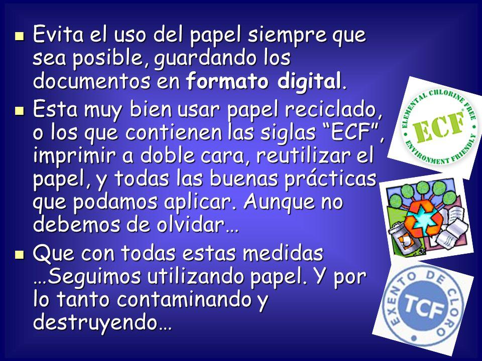 Evita el uso del papel siempre que sea posible, guardando los documentos en formato digital.
