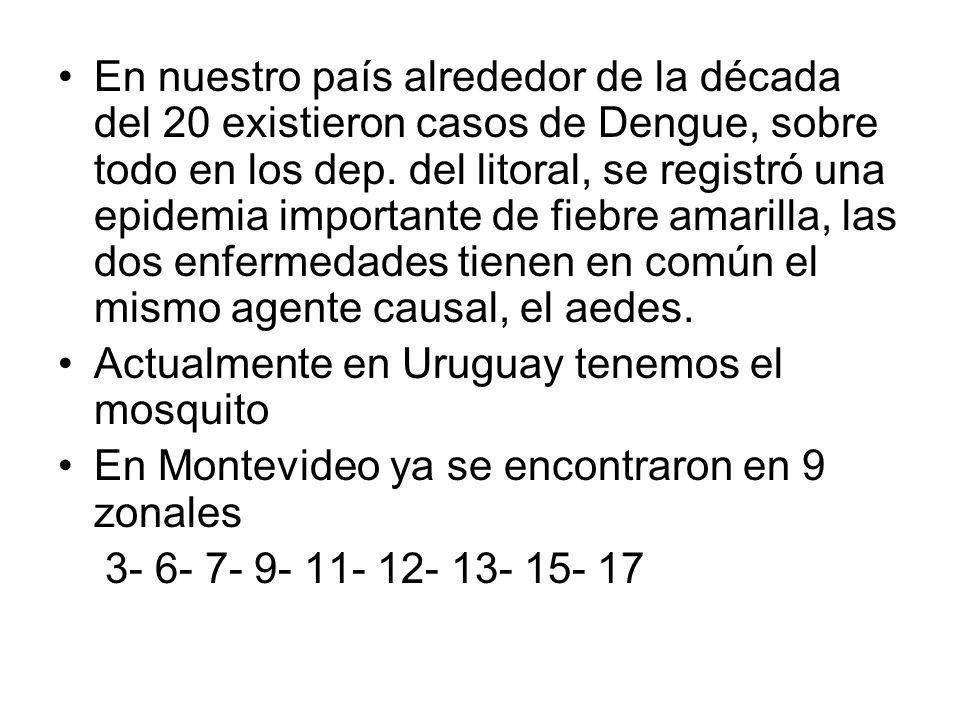 En nuestro país alrededor de la década del 20 existieron casos de Dengue, sobre todo en los dep. del litoral, se registró una epidemia importante de f