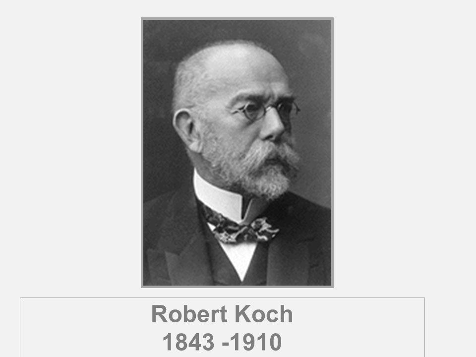 Robert Koch 1843 -1910