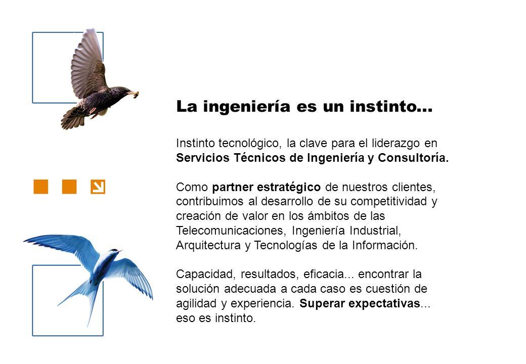 La ingeniería es un instinto... Instinto tecnológico, la clave para el liderazgo en Servicios Técnicos de Ingeniería y Consultoría. Como partner estra