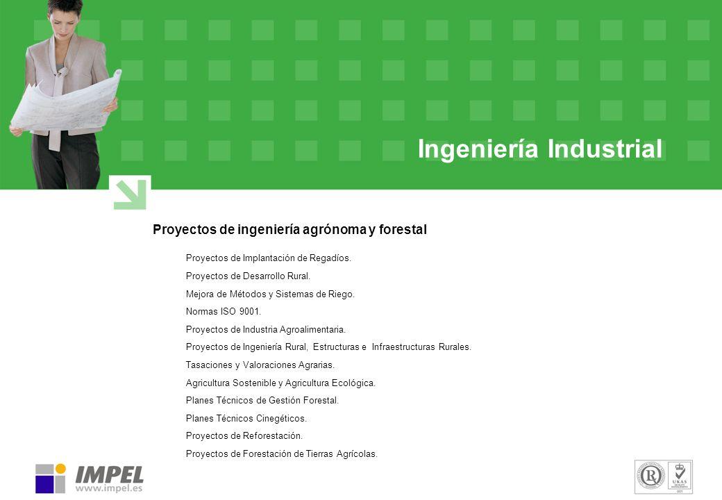 Ingeniería Industrial Proyectos de ingeniería agrónoma y forestal Proyectos de Implantación de Regadíos. Proyectos de Desarrollo Rural. Mejora de Méto