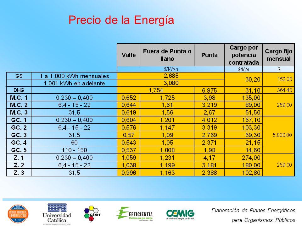 Elaboración de Planes Energéticos para Organismos Públicos Precio de la Energía