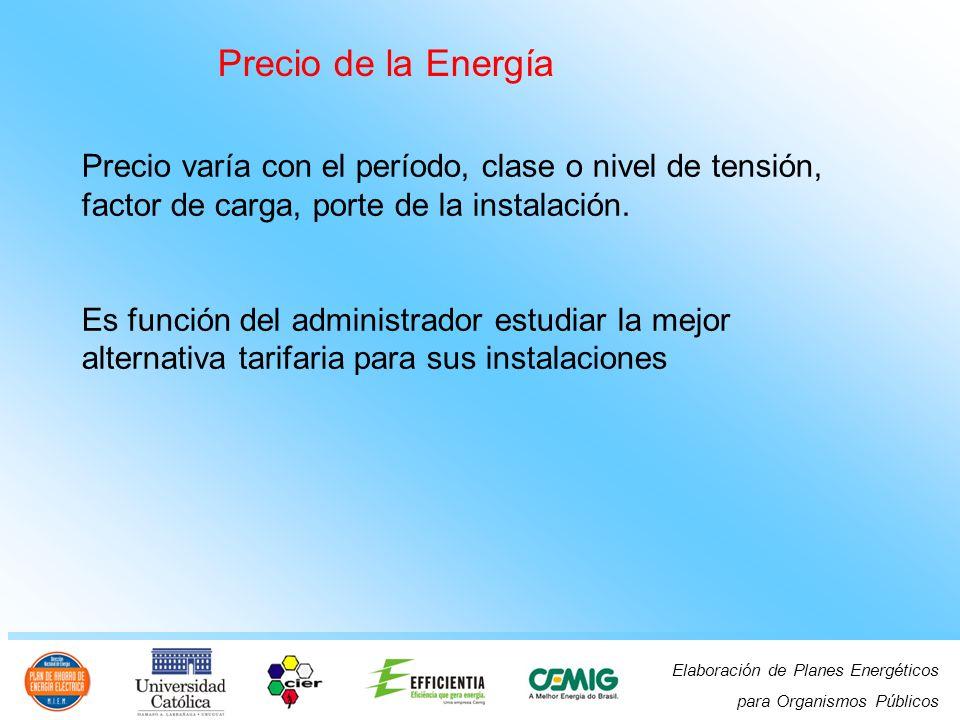 Elaboración de Planes Energéticos para Organismos Públicos Precio de la Energía Precio varía con el período, clase o nivel de tensión, factor de carga, porte de la instalación.