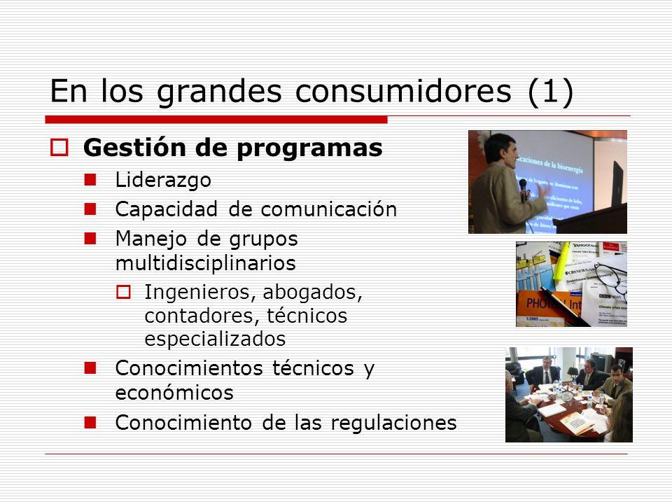 En los grandes consumidores (2) Supervisión de proyectos Conocimientos técnicos Manejo de contratos Diseño de licitaciones y compras de productos y servicios Conocimientos técnicos Manejo de contratos