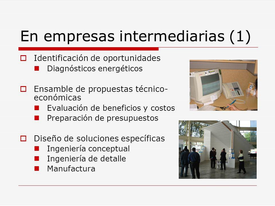 En empresas intermediarias (2) Instalación de materiales, equipos y/o sistemas Montaje Pruebas Calibración Evaluación de impactos/resultados Monitoreo Reporte