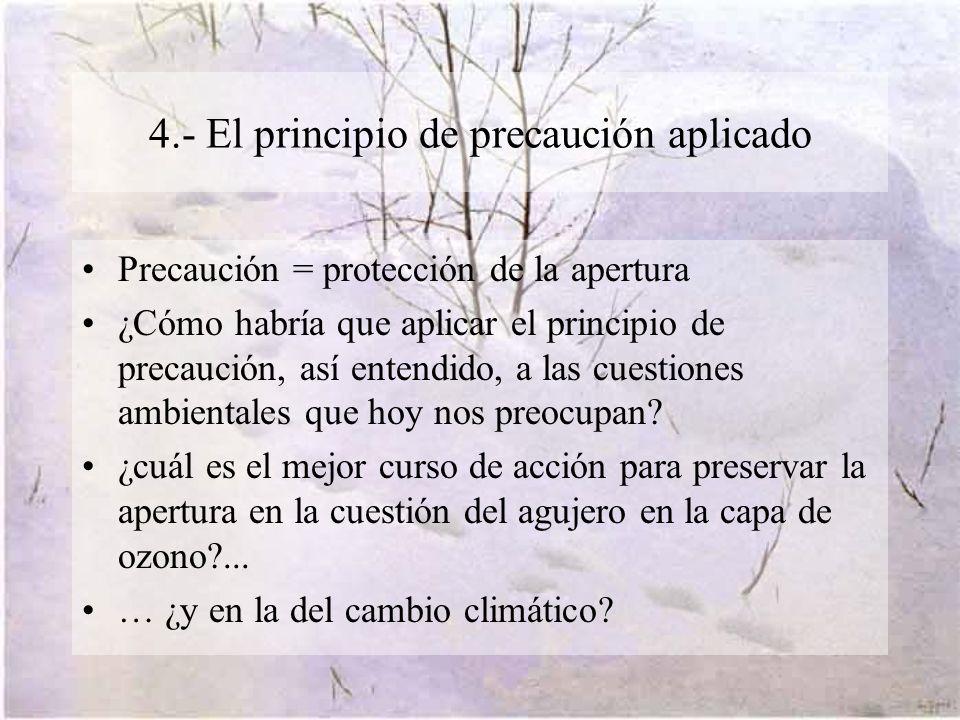 4.- El principio de precaución aplicado Precaución = protección de la apertura ¿Cómo habría que aplicar el principio de precaución, así entendido, a las cuestiones ambientales que hoy nos preocupan.