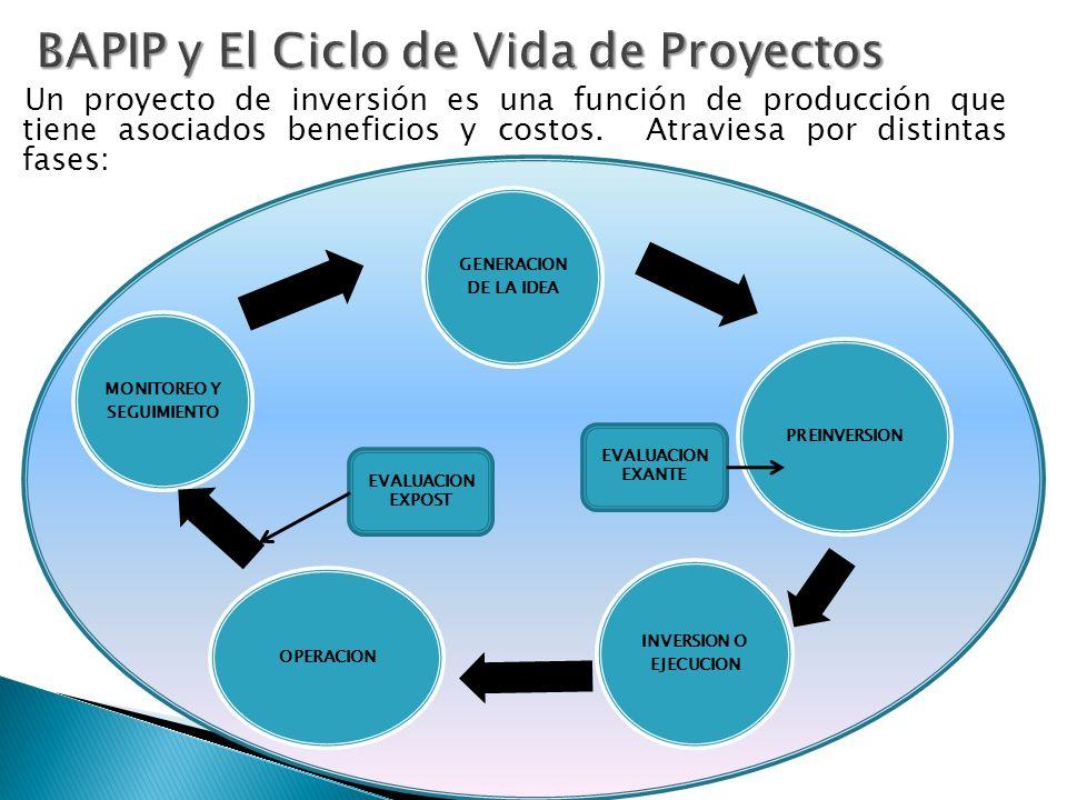 Un proyecto de inversión es una función de producción que tiene asociados beneficios y costos.