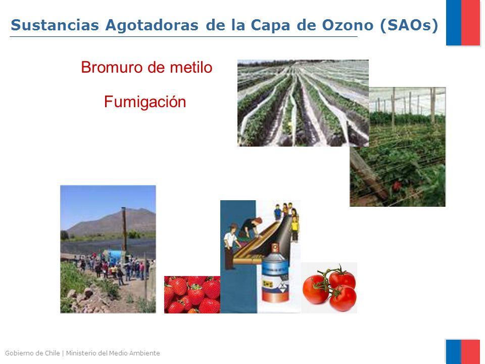 Gobierno de Chile | Ministerio del Medio Ambiente Fumigación Bromuro de metilo Sustancias Agotadoras de la Capa de Ozono (SAOs)