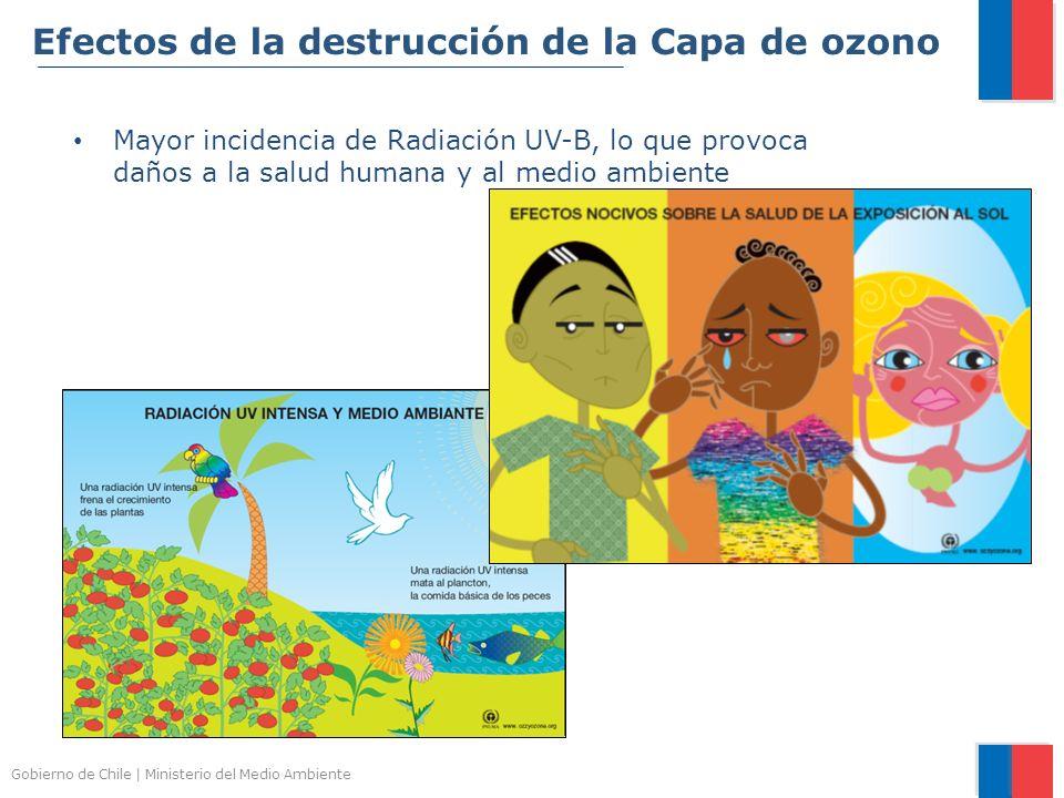Gobierno de Chile | Ministerio del Medio Ambiente Efectos de la destrucción de la Capa de ozono Mayor incidencia de Radiación UV-B, lo que provoca dañ