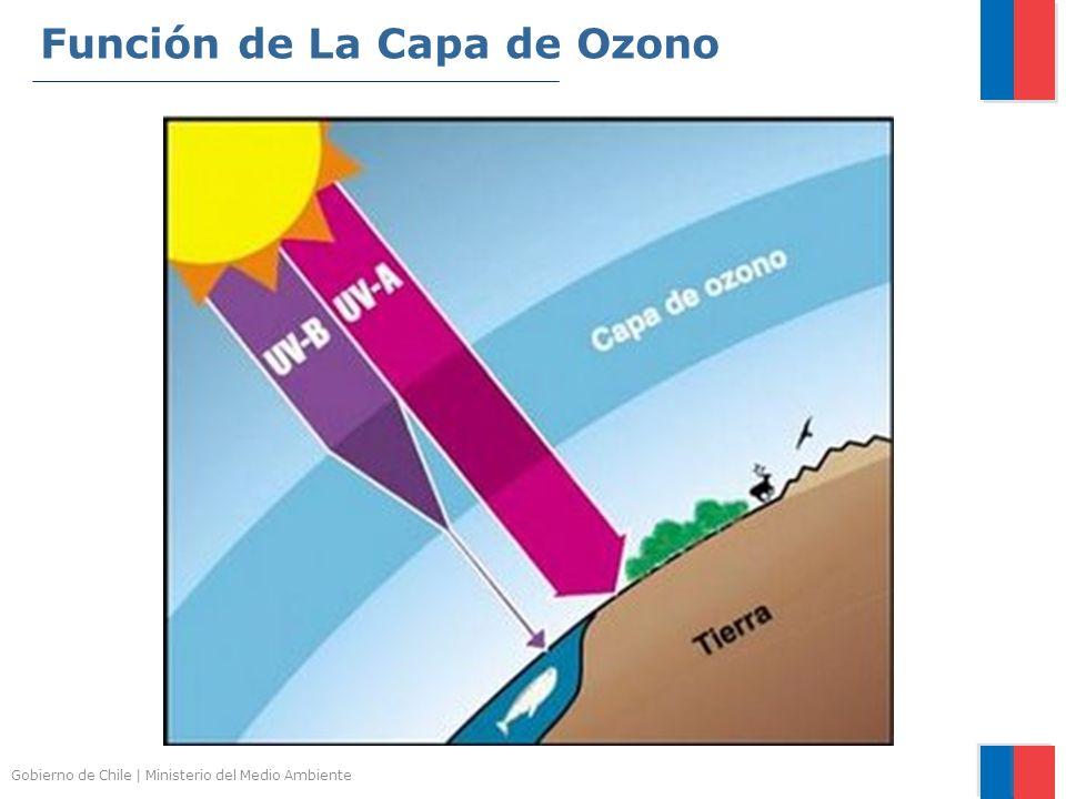 Gobierno de Chile | Ministerio del Medio Ambiente Función de La Capa de Ozono