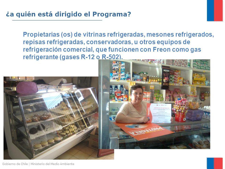 Gobierno de Chile | Ministerio del Medio Ambiente Propietarias (os) de vitrinas refrigeradas, mesones refrigerados, repisas refrigeradas, conservadora