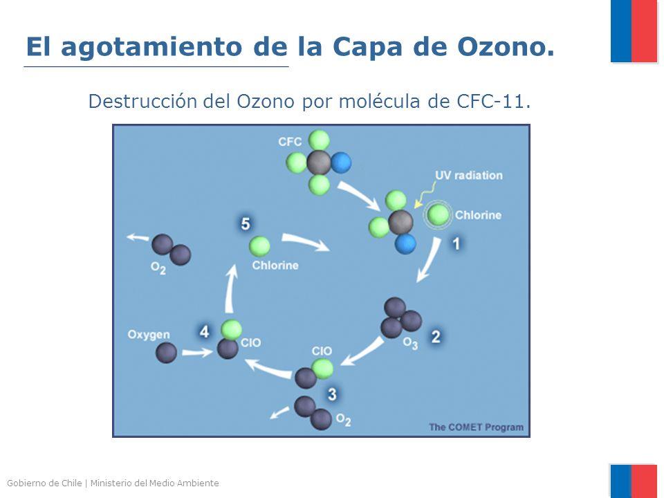 Gobierno de Chile | Ministerio del Medio Ambiente Destrucción del Ozono por molécula de CFC-11. El agotamiento de la Capa de Ozono.
