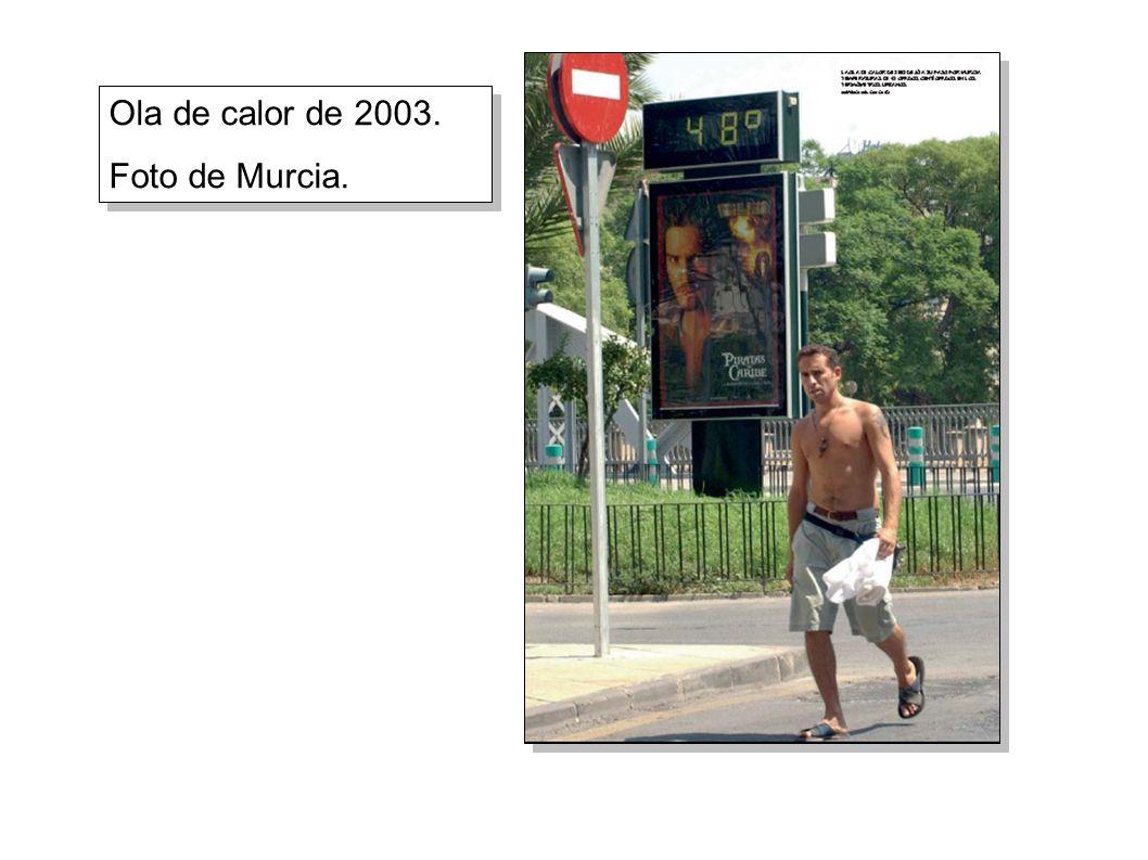 Ola de calor de 2003. Foto de Murcia. Ola de calor de 2003. Foto de Murcia.