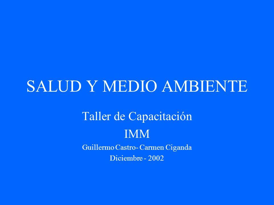 SALUD Y MEDIO AMBIENTE Taller de Capacitación IMM Guillermo Castro- Carmen Ciganda Diciembre - 2002